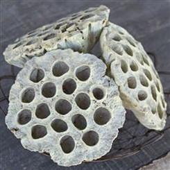 Lotus Pod on Stem - Pollen (6 pc bunch)