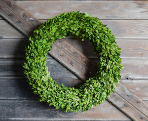BOXWOOD COUNTRY MANOR WREATH - ROUND - 24""