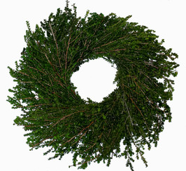"Lepto Wreath - 17"""