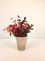 Potted Eucalyptus - Shades of Fall (Faux)