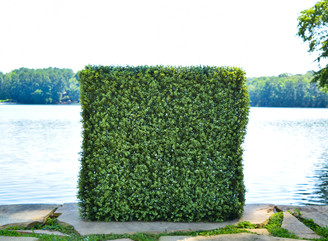 FAUX BOXWOOD HEDGE - 42 x 42 x 13""