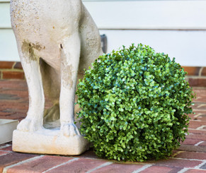"FAUX BOXWOOD BALL - 11""  (DS)"