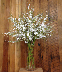 "Pure Elegance Spray - 32"" min 12"