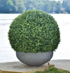 FAUX BOXWOOD BALL - 28""