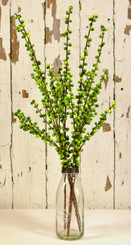 "ILEX BERRY SPRAY - GREEN - 28"" - MIN. 12"