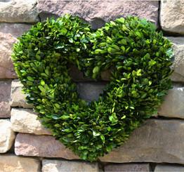 "Preserved Boxwood Wreath - Heart - 16"""