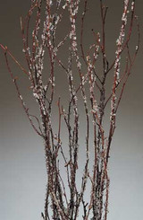 Birch Branches - Iced - 3 to 4 ft - 4 Pcs