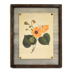 WALL ART - HONEY HIBISCUS - 17.5 x 21.5""