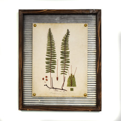 WALL ART - SWORD FERN - 17.5 x 21.5""
