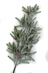WINTER ICED PINE SPRAY - 23""