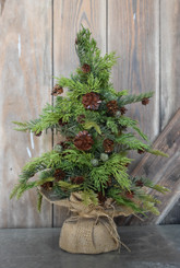 PINE & JUNIPER MINI TREE - 7 x 17""