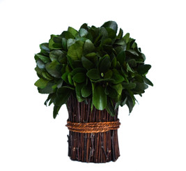 PRESERVED LAUREL BUNDLE - 10""
