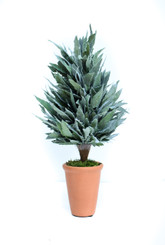 PRESERVED MAHONIA FROSTED CONE TOPIARY - 16""