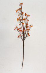"BERRY STEM 36"" - ORANGE"