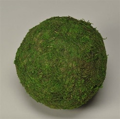"MOSS BALL - GREEN 4"" - PACKED 6"
