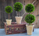 "Shown with 16"" & 12"" Single Ball Topiary"