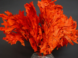 Transparent Oak Leaves - Persimmon - 8 oz Bunches/cs