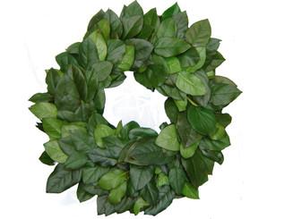 "Preserved Salal Leaf Wreath - Green - 16"""