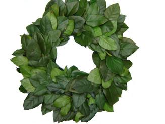 "Preserved Salal Leaf Wreath - Green - 21"""