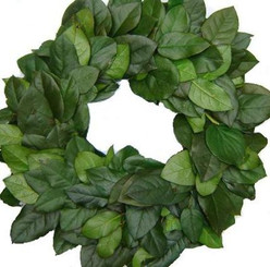 "Preserved Salal Leaf Wreath - Green - 24"""
