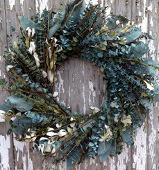 EUCALYPTUS WREATH - NATIVE DISCOVERY - 24""