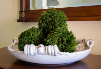 "TUSCAN CYPRESS BALL - 6"" - MIN. 8"