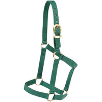 Economy Halter | Yearling