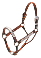 Weanling Cactus Berry Show Halter