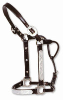 CIRCLE Y SHOW HALTER w/ ENGRAVED SILVER, Size Horse #0619-0000