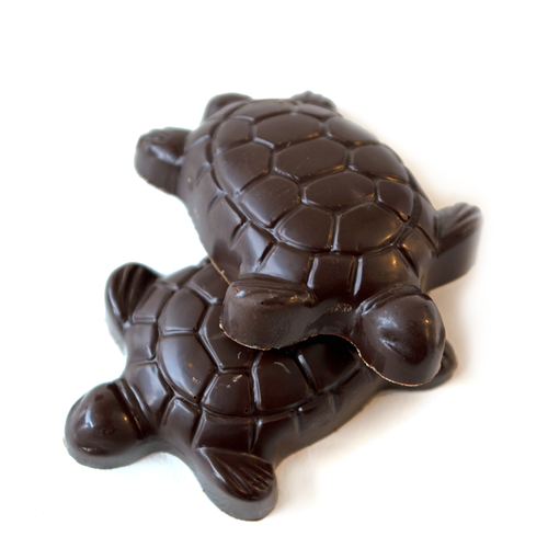 Turtle Chocolate Turtles | Finest Dark Belgian & Milk Chocolates from Lang's Chocolates