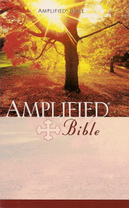 Paperback Amplified Bible