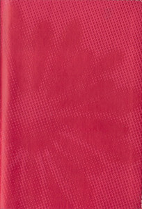 TNIV Hot Pink Daisy Compact Bible