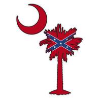 Confederate Flag on South Carolina Tree & Moon