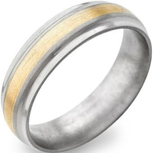 Raised Yellow Gold Titanium Band