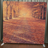 8X8 Single Sided Custom backdrop (Autumn Road)