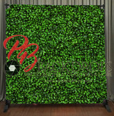 8x8 Printed Tension fabric backdrop (Hedge Wall)
