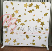 Single Sided Pillow Cover Backdrop  (Confetti Stars)