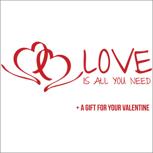 love is all you need  - Valentine's Day decals for shop windows