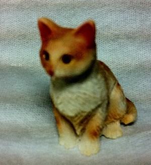 Orange Tabby Cat Sitting