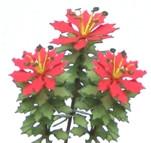 Red Poinsettia Flower Kit
