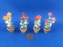 Poppies in a  Pot by Barb Plevan