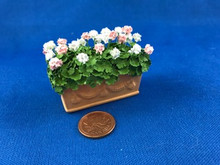 Handcrafted Geraniums in Clay Planter