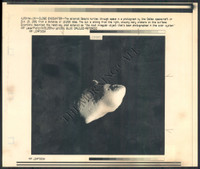 http://images.mmgarchives.com/MC/A-054-MC/AB-1987-MC/ACE-215-MC_F.JPG