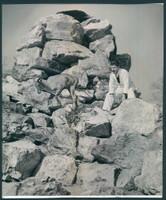 http://images.mmgarchives.com/BS/A-272-BS/AV-1760-BS/BHU-830-BS_F.JPG
