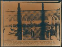 http://images.mmgarchives.com/BS/A-289-BS/AU-1367-BS/BIK-721-BS_F.JPG