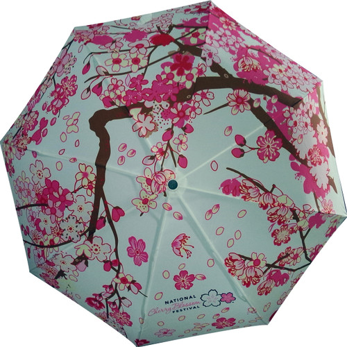 ORDERS FOR THIS UMBRELLA WILL BE SHIPPED IN ABOUT 2-3 WEEKS