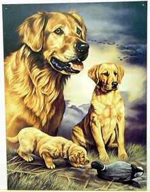 GOLDEN EXPERIENCE SIGN SHOWS A GOLDEN RETRIEVER AS A PUP, YEAR OLD AND ADULT, GREAT COLOR AND DETAIL