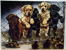 GRAHAM  JAILBIRDS SIGN…SHOWS A GROUP OF PUPS, CHOCOLATE, YELLOW AND BLACK LABS UP AGAINST THE FENCE, WITH DUCKS ON THE OTHER SIDE, WARM CUDDLY COLORS NICE DETAIL