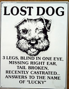 LOST DOG LUCKY SIGN
