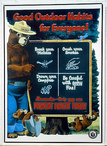 SMOKEY GOOD HABITS PREVENT FOREST FIRE SIGN